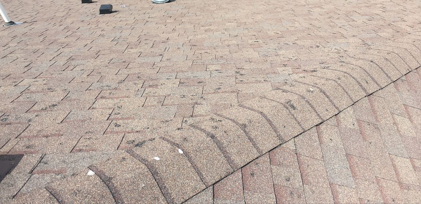 hail roof